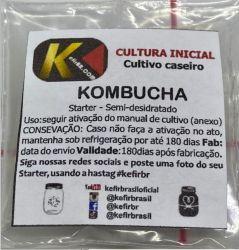Kombucha Mushroom Fração + Pote  + Colher  (FRETE GRÁTIS)